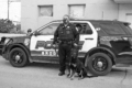 Brodhead Police Officer Brian Bennett stands with his K9 partner, Arrow, outside the Brodhead Police Department. The special squad vehicle features addi-tional technology, including window-mounted cooling fans and a repurposed rear passenger compartment to keep Arrow riding in comfort. Donations from area businesses and community members are vital to the K9 program.